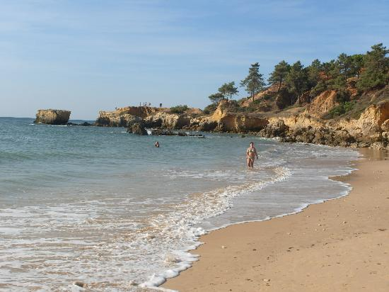 Holiday Village Algarve Balaia: Local beach hotel runs free bus to