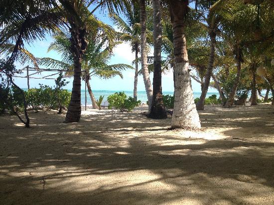 Excursiones Riviera Maya: Punta Allen