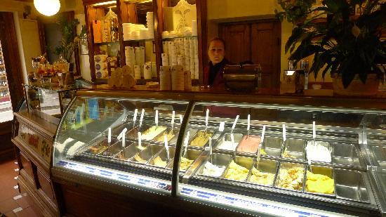 The gelato bar at Vivoli - Picture of Vivoli, Florence - Tripadvisor