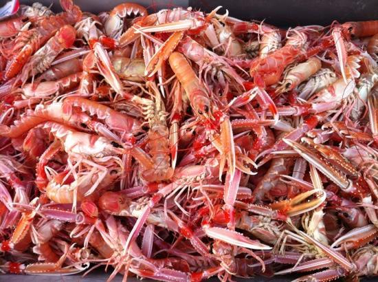 Meilleurs Restaurants Paimpol