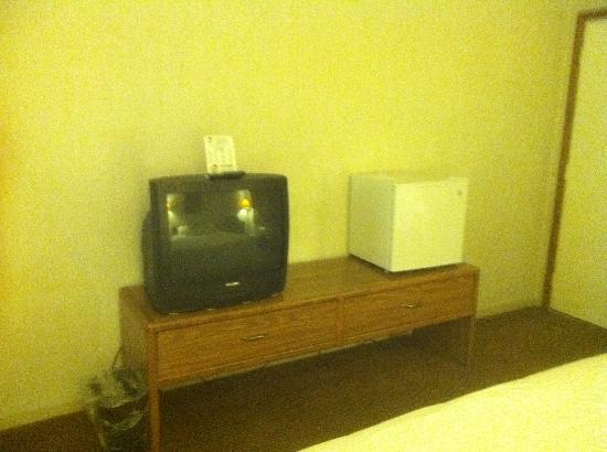 Painted Buffalo Inn: Tv and fridge included in room