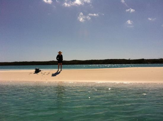 Exuma Vacation Cottages: Just one of the many sand/bars/beaches!