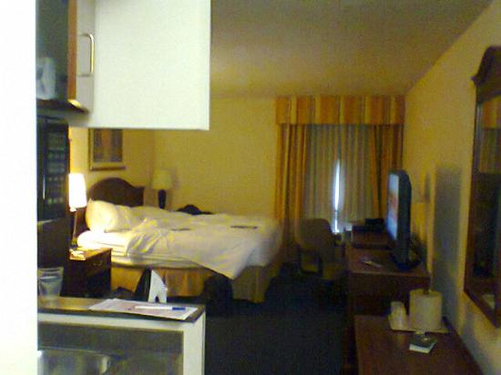Holiday Inn Express & Suites Atlanta N-Perimeter Mall Area: Clean cut hotel room