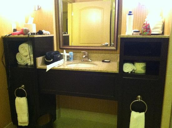 Embassy Suites by Hilton Columbus - Airport: Bathroom