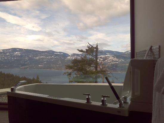 Sparkling Hill Resort : View from our bathtub