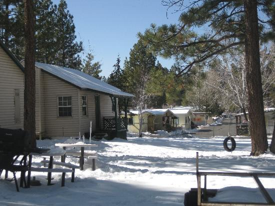 Lakewood Cabins at Big Bear Lake: Cabin 9 is the last one on the left