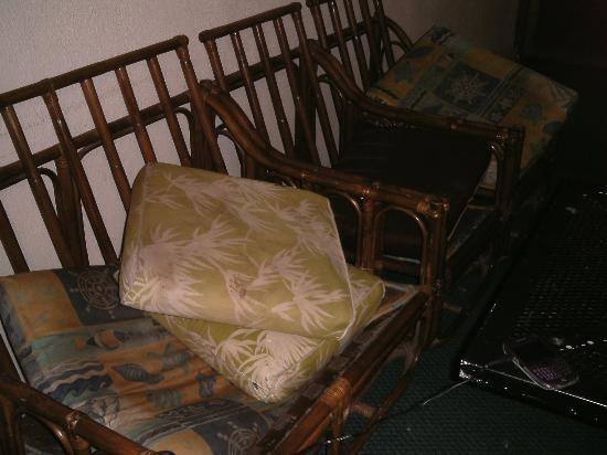 Federal Backpackers : broken sofas