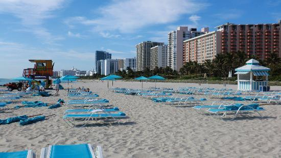 Hotel Riu Plaza Miami Beach: Strand vor dem Hotel