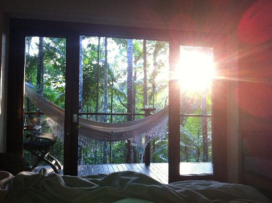 Silky Oaks Lodge: View from bed.