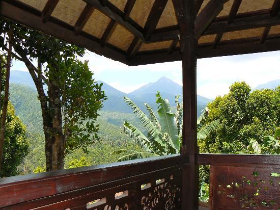 Lumbung Bali Cottages and Spa: vue de la terrasse