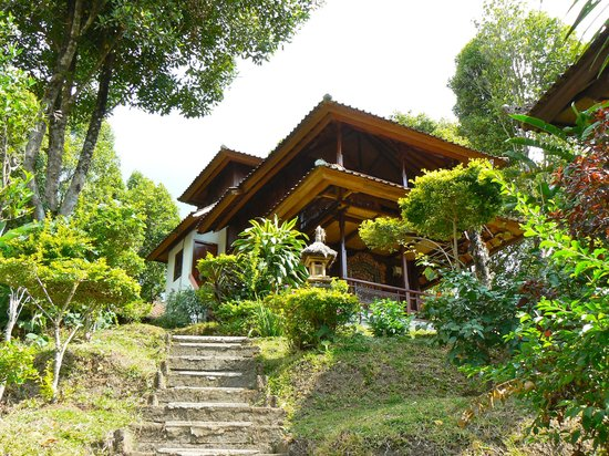 Lumbung bali cottages and spa munduk cottage reviews for Cottage bali