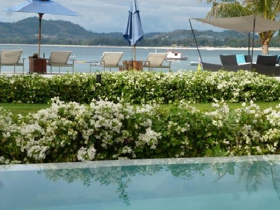 Beachfront Phuket: view from pool