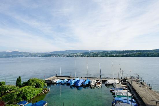 Hirschen am See: Aussicht