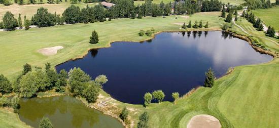 Chalet del Golf: Campo de Golf