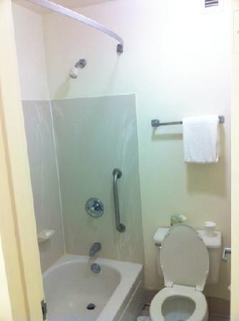 كواليتي إن توليدو إيربورت: Missing shower curtain