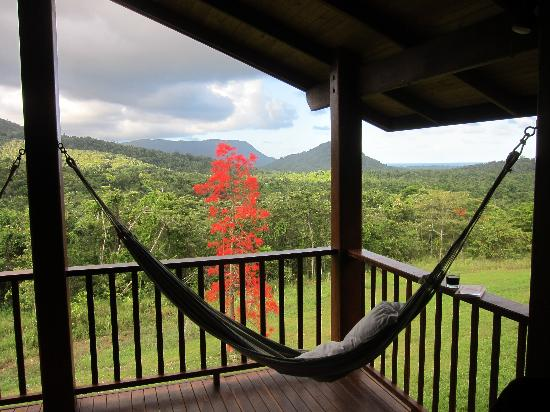 View and Hammock