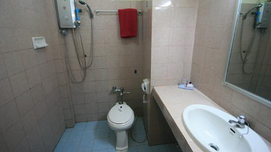 Diana Dragon Apartment: bathroom