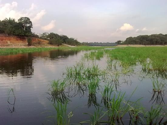 Amazon Lodge: River cruise