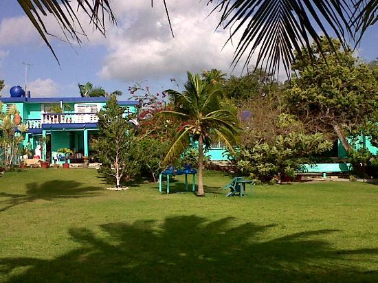 Casita Carolina: Jardin y hotel