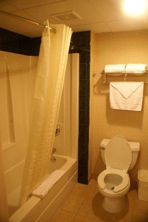 Comfort Inn Edison : bathroom