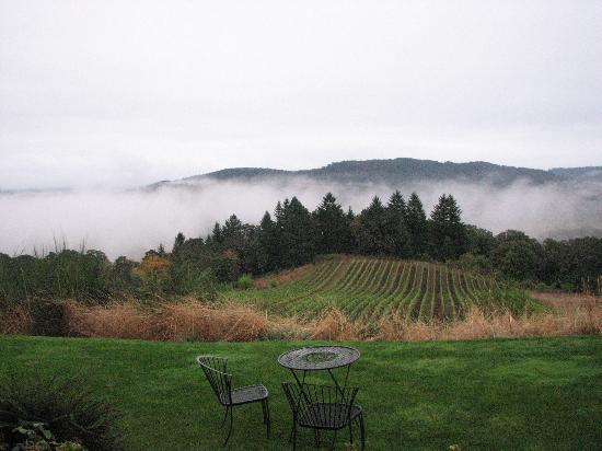 Youngberg Hill Vineyards & Inn: view from the porch outside Gamay room