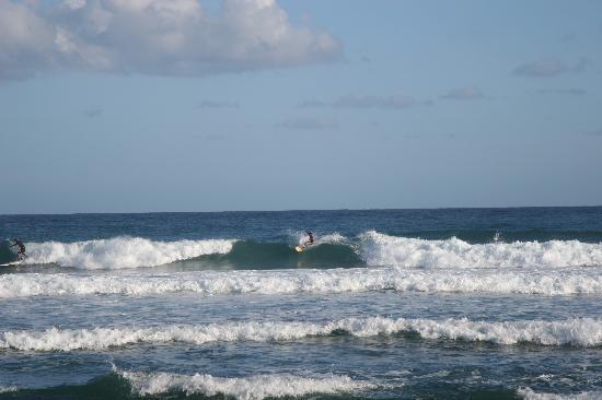 PauHana Surf School: Great Waves