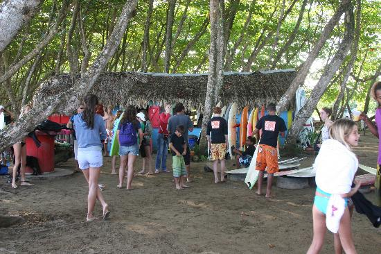 PauHana Surf School: Busy during the surf comp!