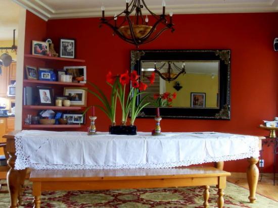 Vineyard View Bed & Breakfast: Fireplace in Living Room
