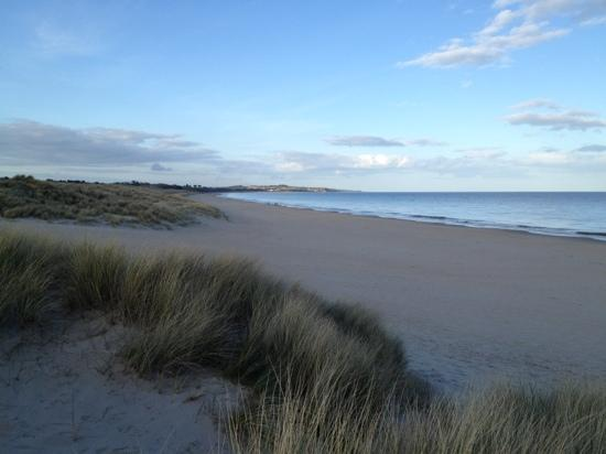 Curracloe Beach: march 4,2012