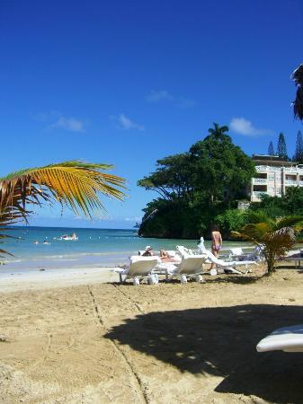 كابلز سان سوسي أول إنكلوسيف: CSS Beach