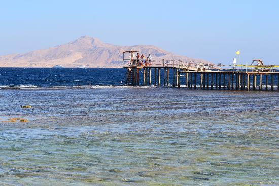 Tirana Aqua Park Resort: Hotel's Jetty/view of Tiran ISland