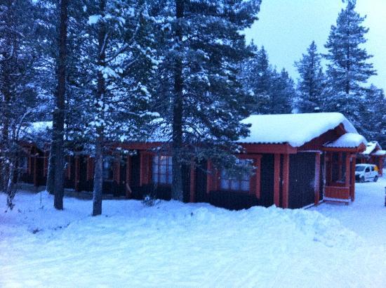 Hotel Kieppi: One of the log cabins - tucked away between tall trees...