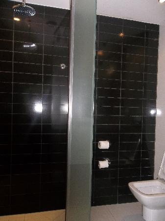 Radisson Blu Hotel, Port Elizabeth: Shower And Toilet Division