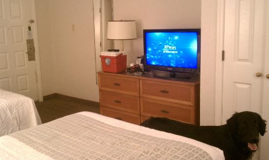 La Quinta Inn Tallahassee North: Flatscreen TV and HD tv guide