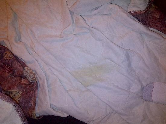 Super 8 Dalton: I pulled back the covers to find this stain. I don't know what it is but I didn't want to sleep