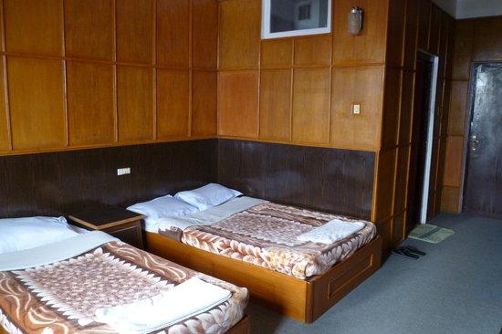 Hotel Srinagar: The room