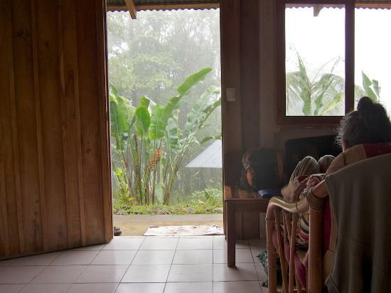 Cabinas Piuri: Looking out our front door.