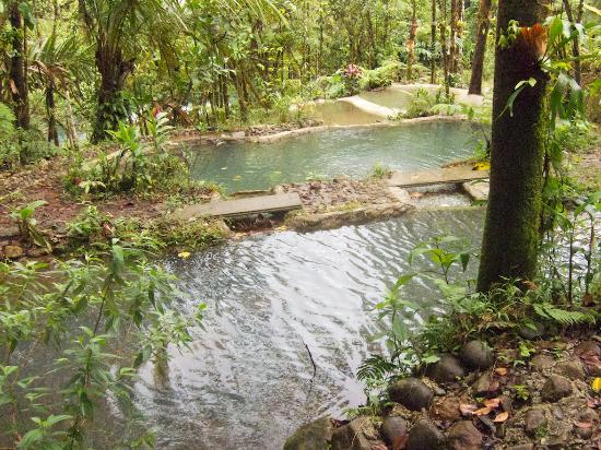 Cabinas Piuri: Looking downhill, across the ponds, to the Rio Celeste.