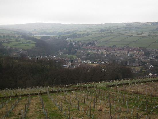 Holmfirth Vineyards