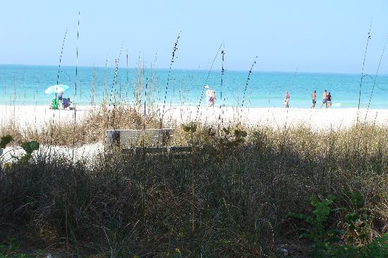 Anna Maria Beach Cottages: Your beach... seconds from cottage
