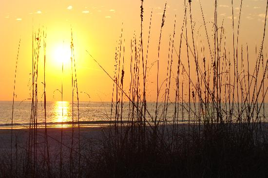 Anna Maria Beach Cottages: The sunset are an event!