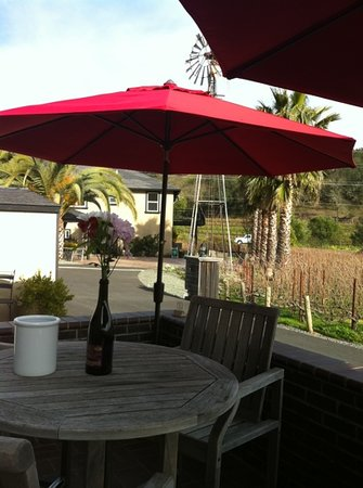 Baldacci Vineyards: grounds