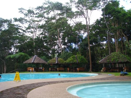 Swimming pool picture of eden nature park davao city for Garden city swimming pool