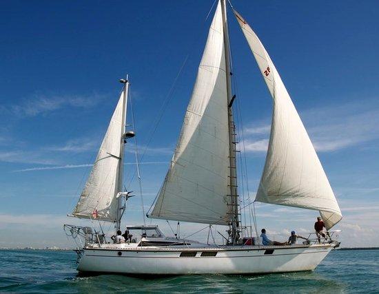 Kiskeedee Sailing Charters