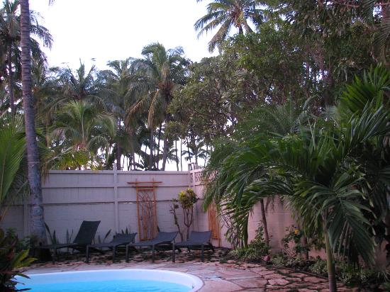 Maui Sunseeker LGBT Resort: poolside....