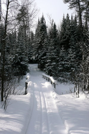 Flathorn - Gegoka Cross Country Ski Trails