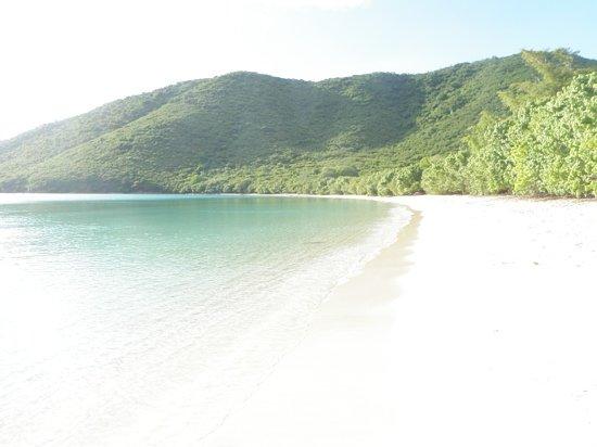 Francis Bay Trail: The beach