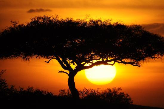 Keekorok Lodge-Sun Africa Hotels: sunset at the mara