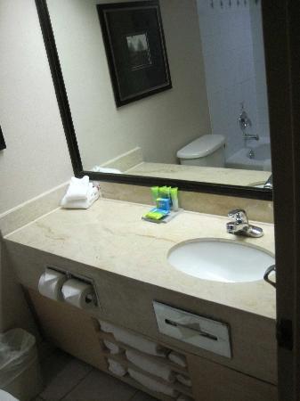 Radisson Hotel Toronto East: Bathroom
