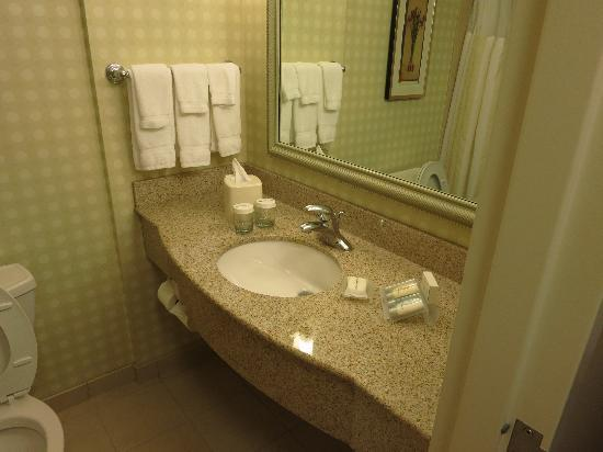 Hilton Garden Inn Great Falls: Bathroom